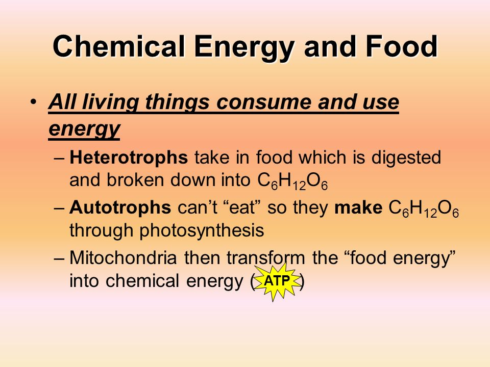 Chemical Energy and Food All living things consume and use energy –Heterotrophs take in food which is digested and broken down into C 6 H 12 O 6 –Auto