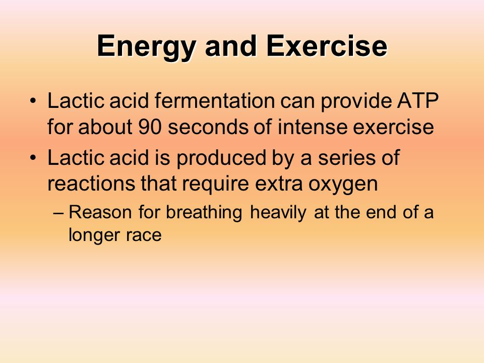 Energy and Exercise Lactic acid fermentation can provide ATP for about 90 seconds of intense exercise Lactic acid is produced by a series of reactions