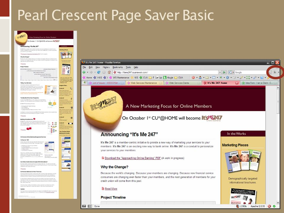 Pearl Crescent Page Saver Basic