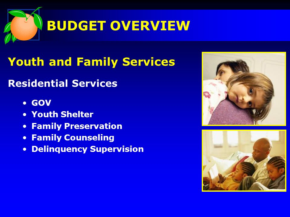 Youth and Family Services Residential Services GOV Youth Shelter Family Preservation Family Counseling Delinquency Supervision BUDGET OVERVIEW