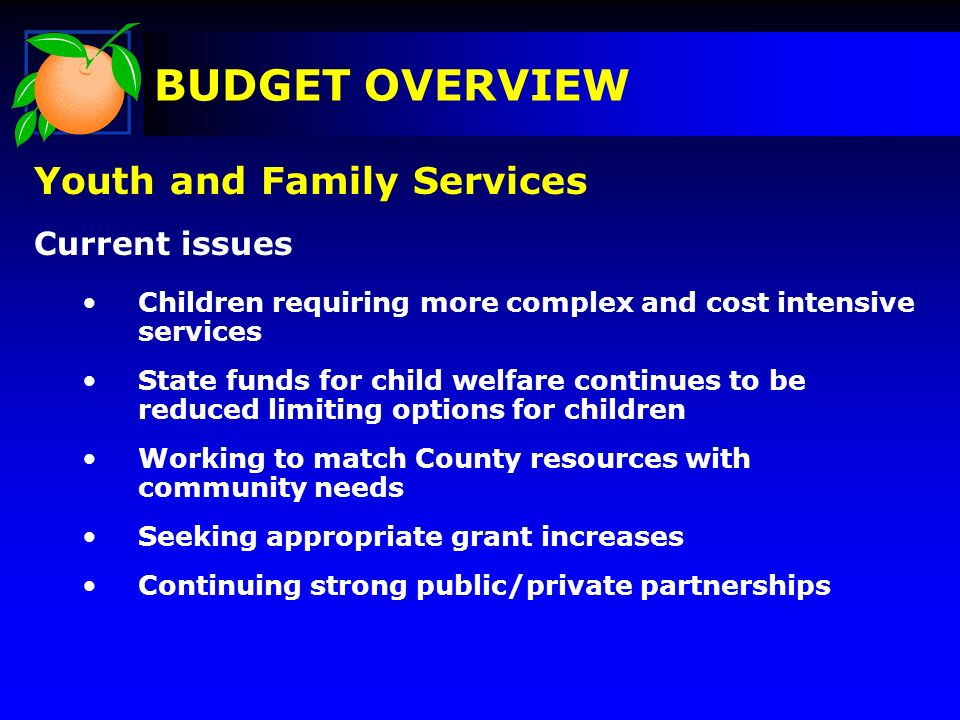 Youth and Family Services Current issues Children requiring more complex and cost intensive services State funds for child welfare continues to be red