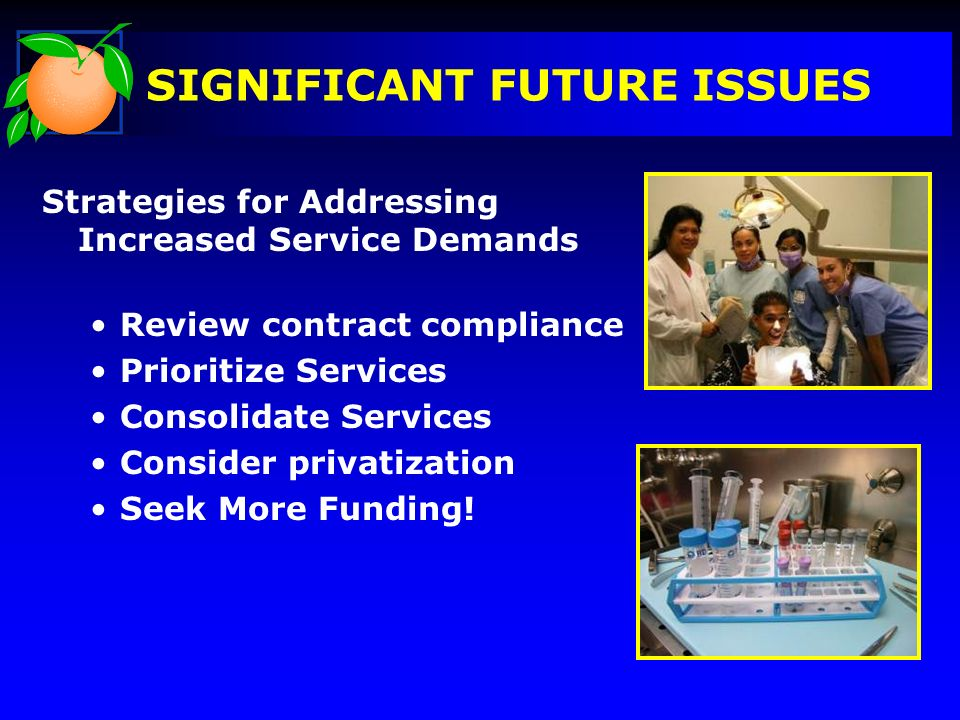 SIGNIFICANT FUTURE ISSUES Strategies for Addressing Increased Service Demands Review contract compliance Prioritize Services Consolidate Services Cons