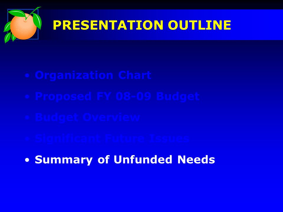 Organization Chart Proposed FY 08-09 Budget Budget Overview Significant Future Issues Summary of Unfunded Needs PRESENTATION OUTLINE