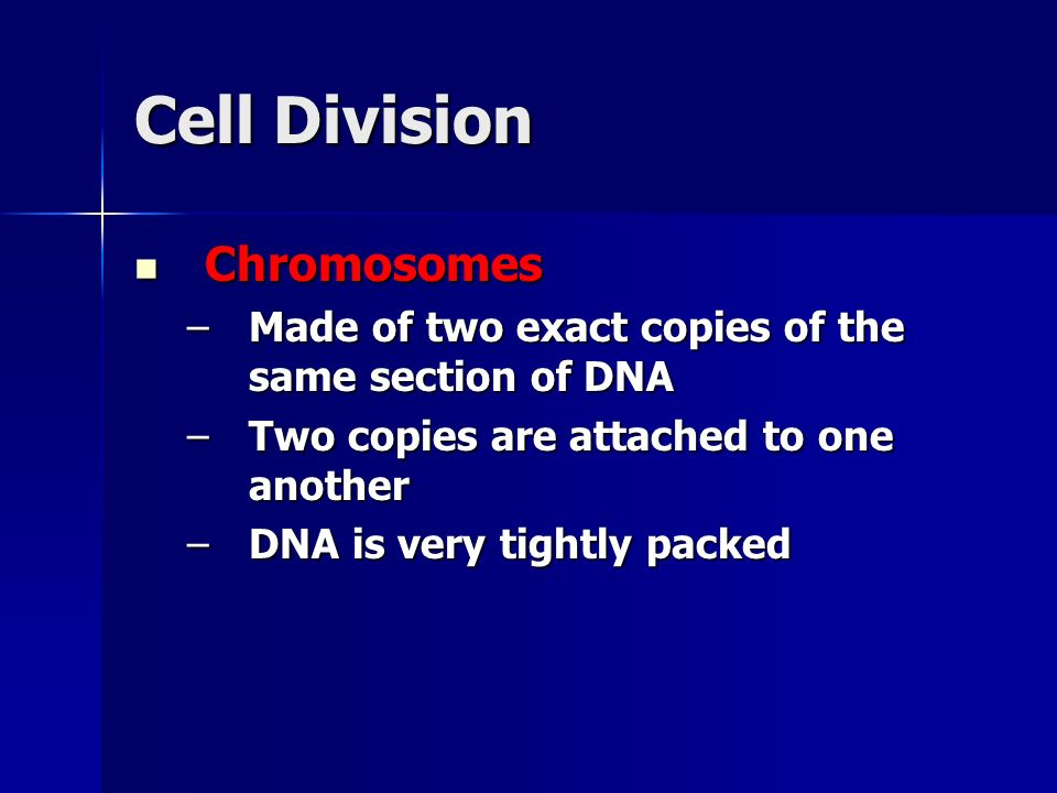 Cell Division Chromosomes Chromosomes –Made of two exact copies of the same section of DNA –Two copies are attached to one another –DNA is very tightl