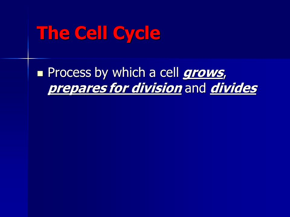 Process by which a cell grows, prepares for division and divides Process by which a cell grows, prepares for division and divides