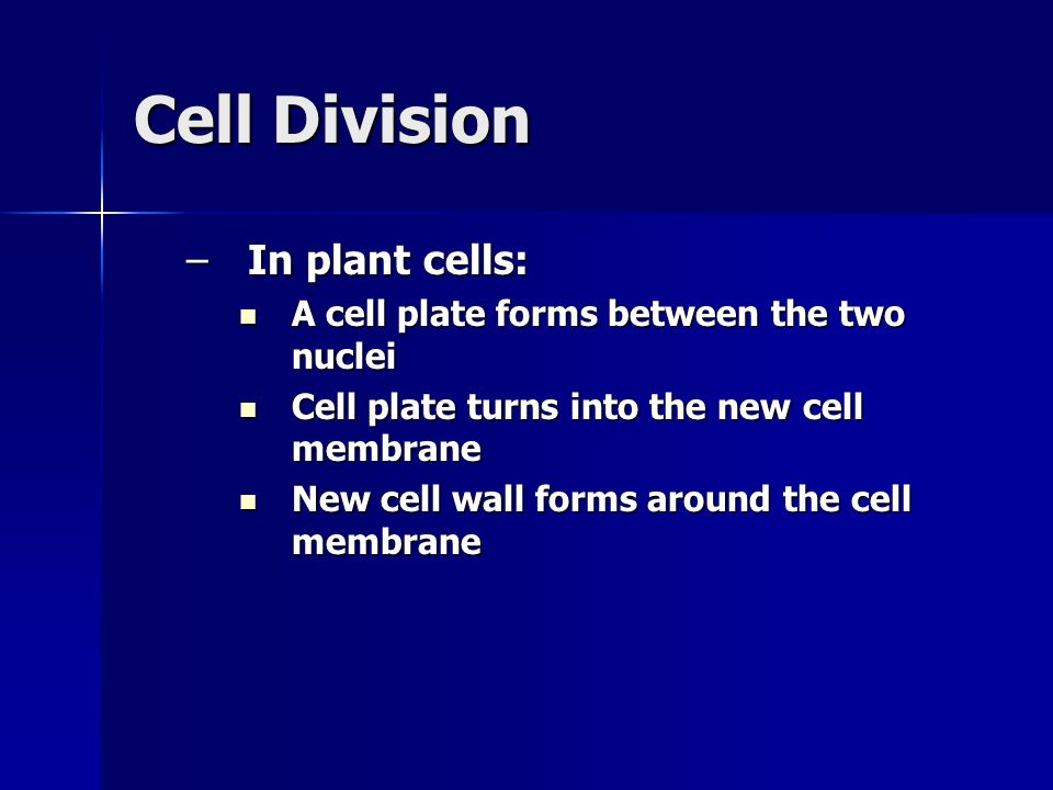 Cell Division –In plant cells: A cell plate forms between the two nuclei A cell plate forms between the two nuclei Cell plate turns into the new cell