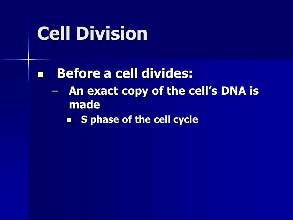 Cell Division 2.Cytokinesis –In animal cells: Cell membrane pinches inward between the two nuclei Cell membrane pinches inward between the two nuclei Continues pinching until two nuclei are separated Continues pinching until two nuclei are separated End up with about half the organelles and cytoplasm in each cell End up with about half the organelles and cytoplasm in each cell