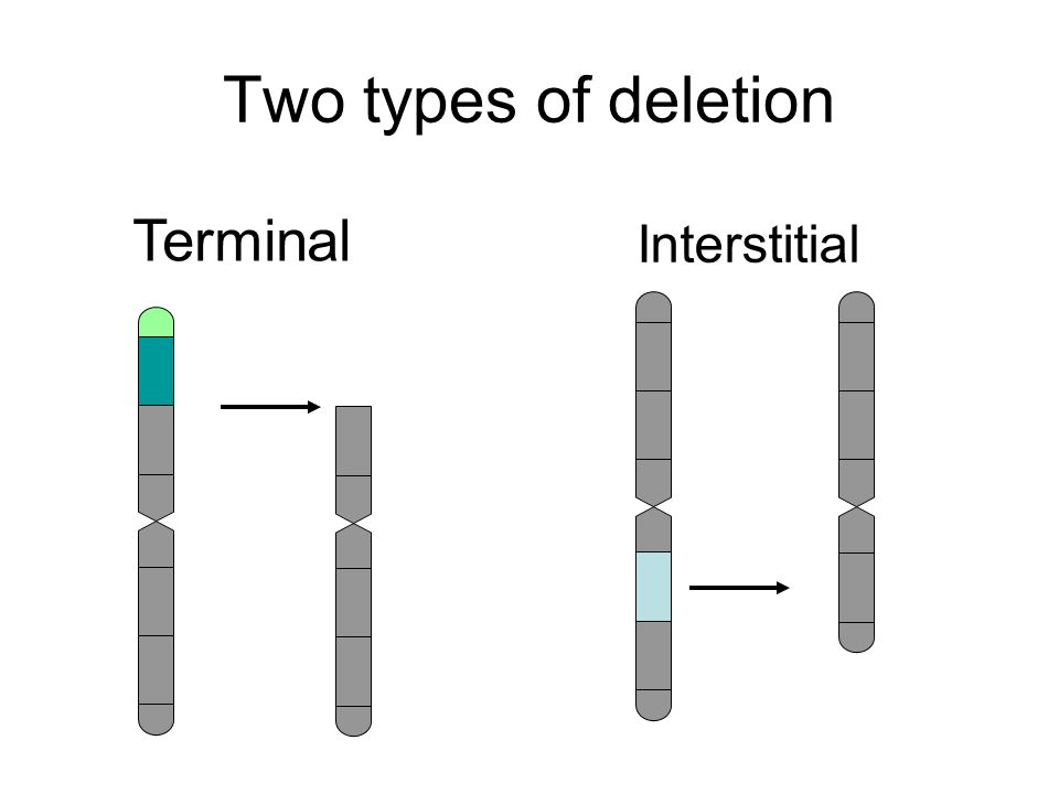 Two types of deletion Interstitial Terminal