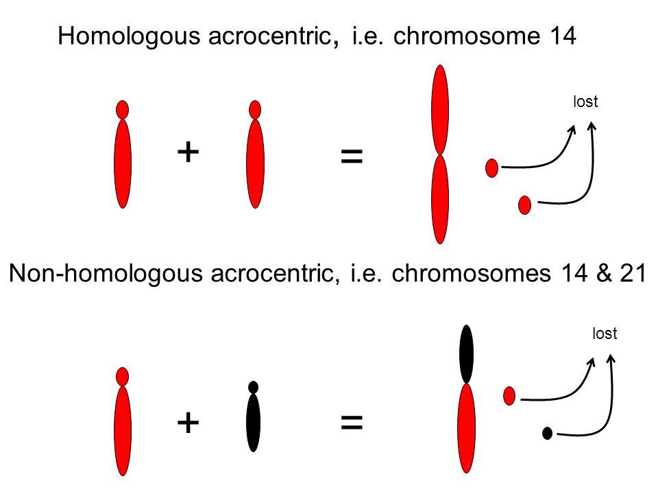 Homologous acrocentric, i.e. chromosome 14 + = lost Non-homologous acrocentric, i.e. chromosomes 14 & 21 += lost