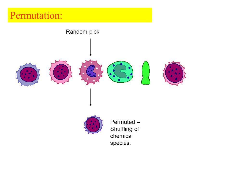 Permutation: Random pick Permuted – Shuffling of chemical species.