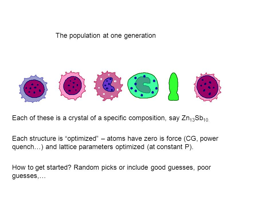 The population at one generation Each of these is a crystal of a specific composition, say Zn 13 Sb 10.