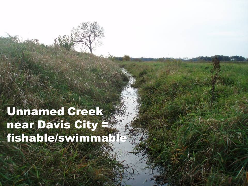 Unnamed Creek near Davis City = fishable/swimmable