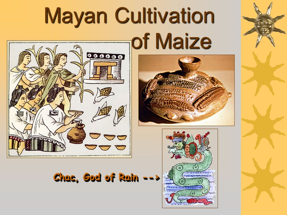 Mayan Cultivation of Maize Chac, God of Rain -->