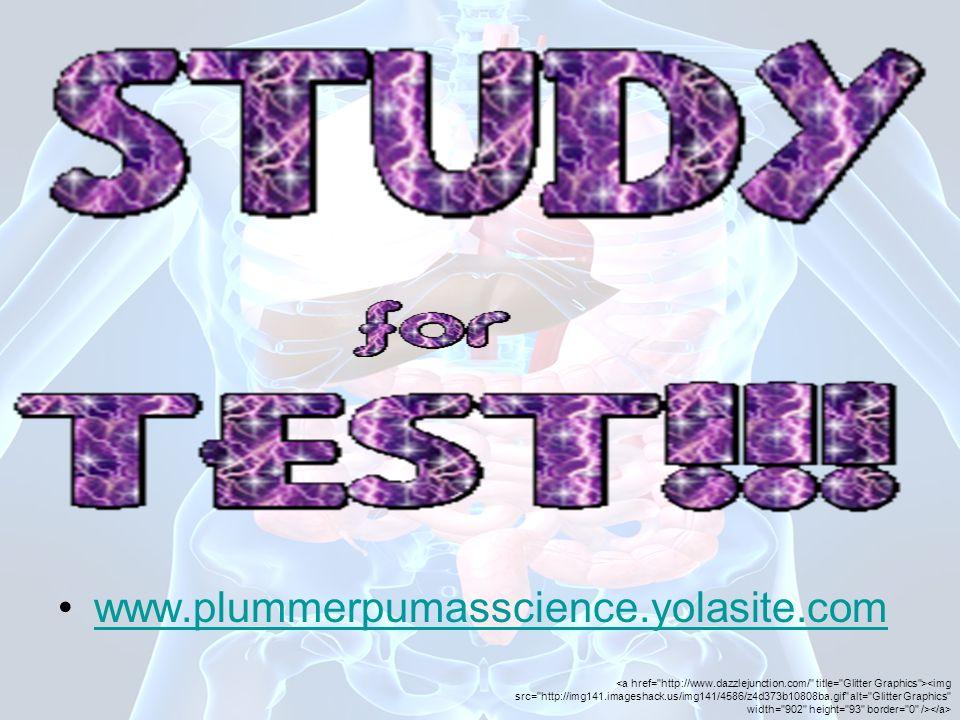 www.plummerpumasscience.yolasite.com