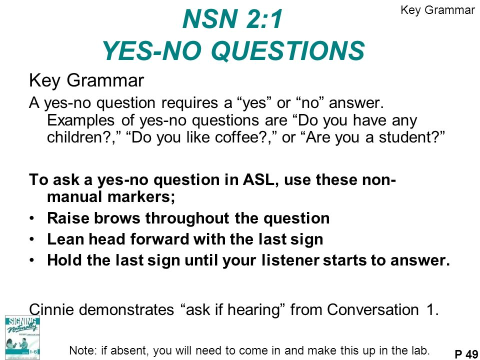 NSN 2:1 YES-NO QUESTIONS Key Grammar A yes-no question requires a yes or no answer. Examples of yes-no questions are Do you have any children?, Do you