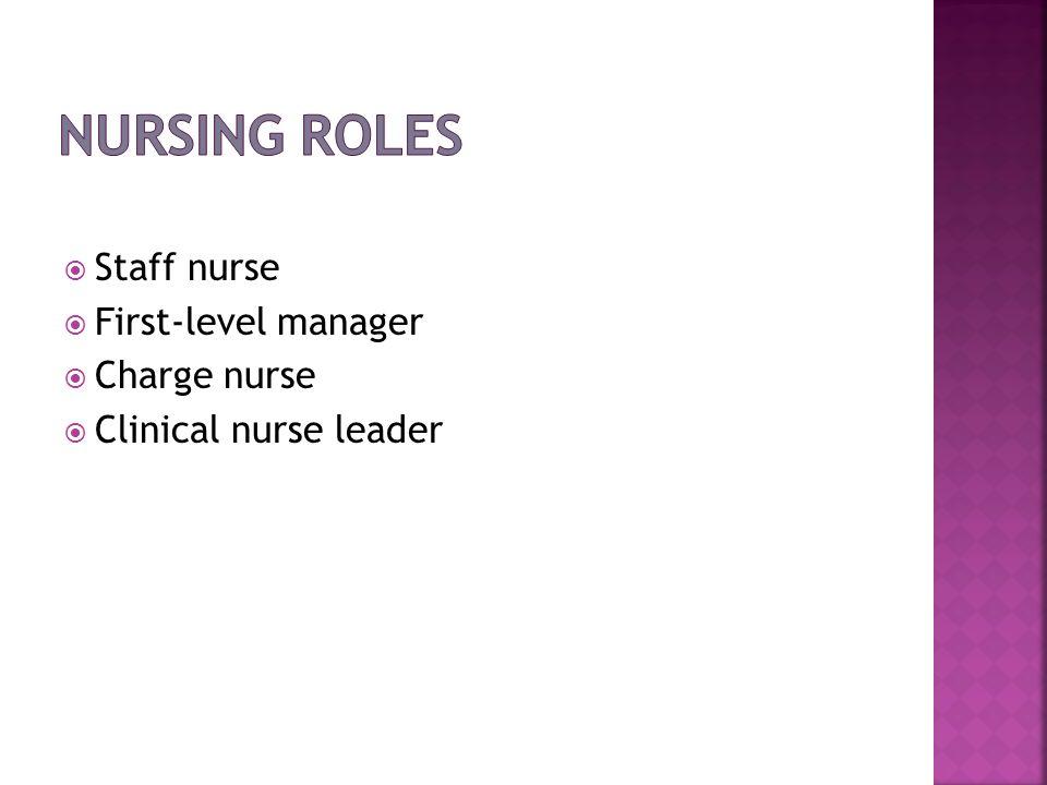 Staff nurse First-level manager Charge nurse Clinical nurse leader