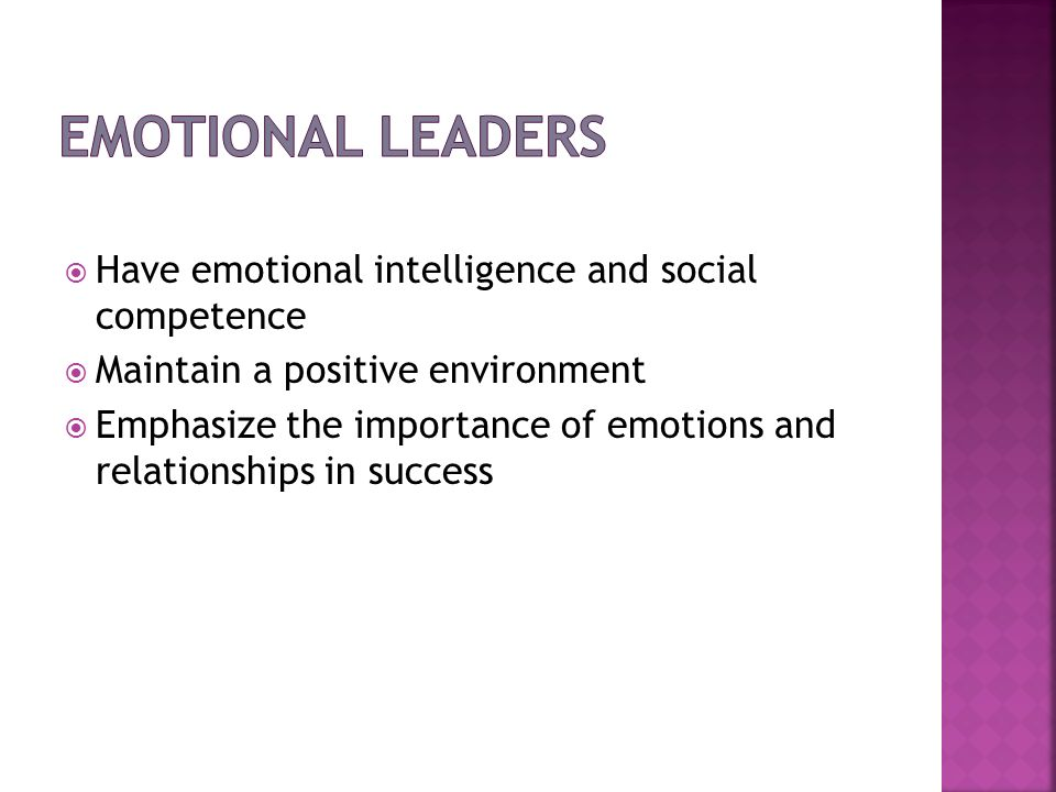 Have emotional intelligence and social competence Maintain a positive environment Emphasize the importance of emotions and relationships in success
