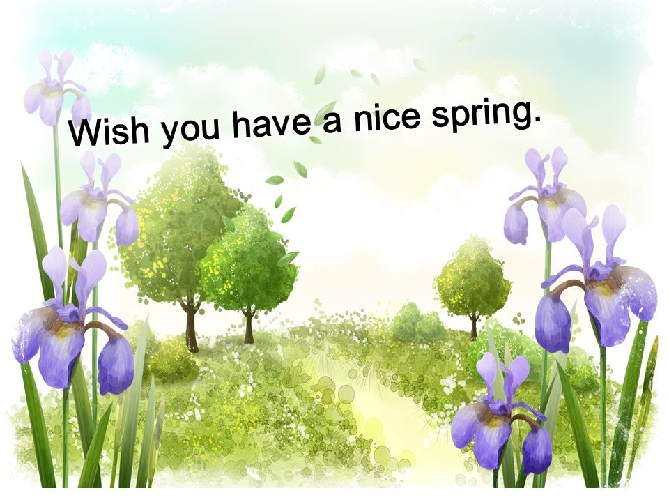 Wish you have a nice spring.