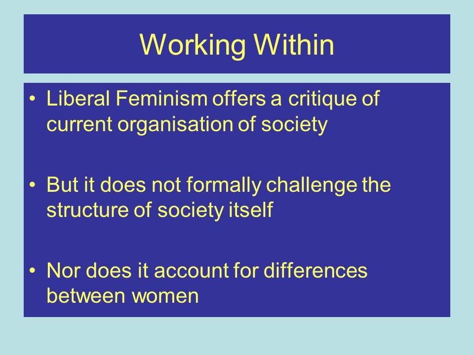 Working Within Liberal Feminism offers a critique of current organisation of society But it does not formally challenge the structure of society itsel