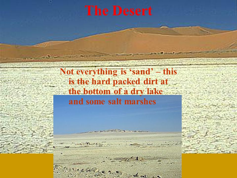 The Desert Not everything is sand – this is the hard packed dirt at the bottom of a dry lake and some salt marshes