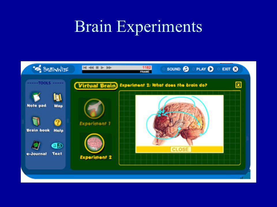Brain Experiments