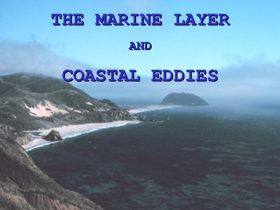 THE MARINE LAYER AND COASTAL EDDIES THE MARINE LAYER AND COASTAL EDDIES