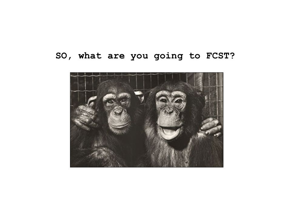 SO, what are you going to FCST