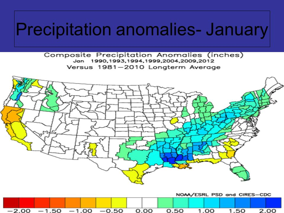 Precipitation anomalies- January