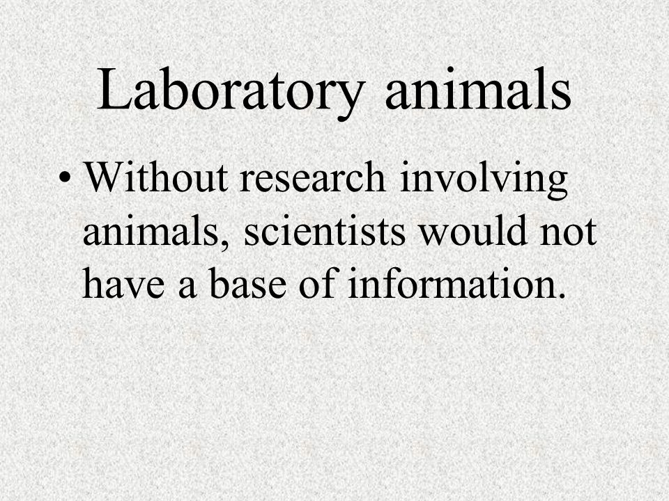 Laboratory animals Without research involving animals, scientists would not have a base of information.