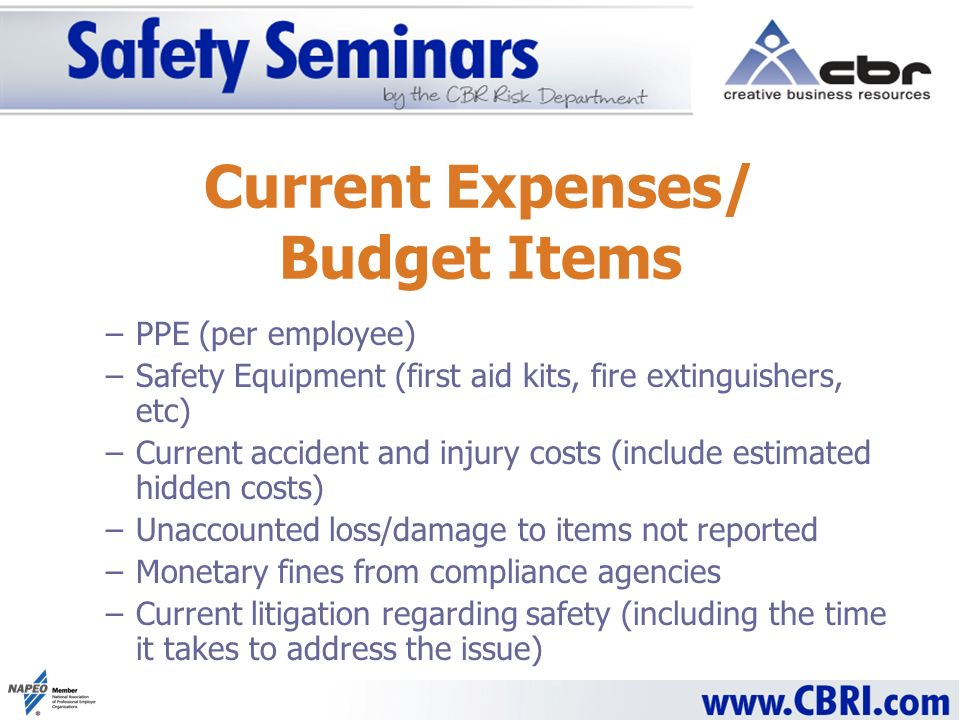 –PPE (per employee) –Safety Equipment (first aid kits, fire extinguishers, etc) –Current accident and injury costs (include estimated hidden costs) –Unaccounted loss/damage to items not reported –Monetary fines from compliance agencies –Current litigation regarding safety (including the time it takes to address the issue) Current Expenses/ Budget Items