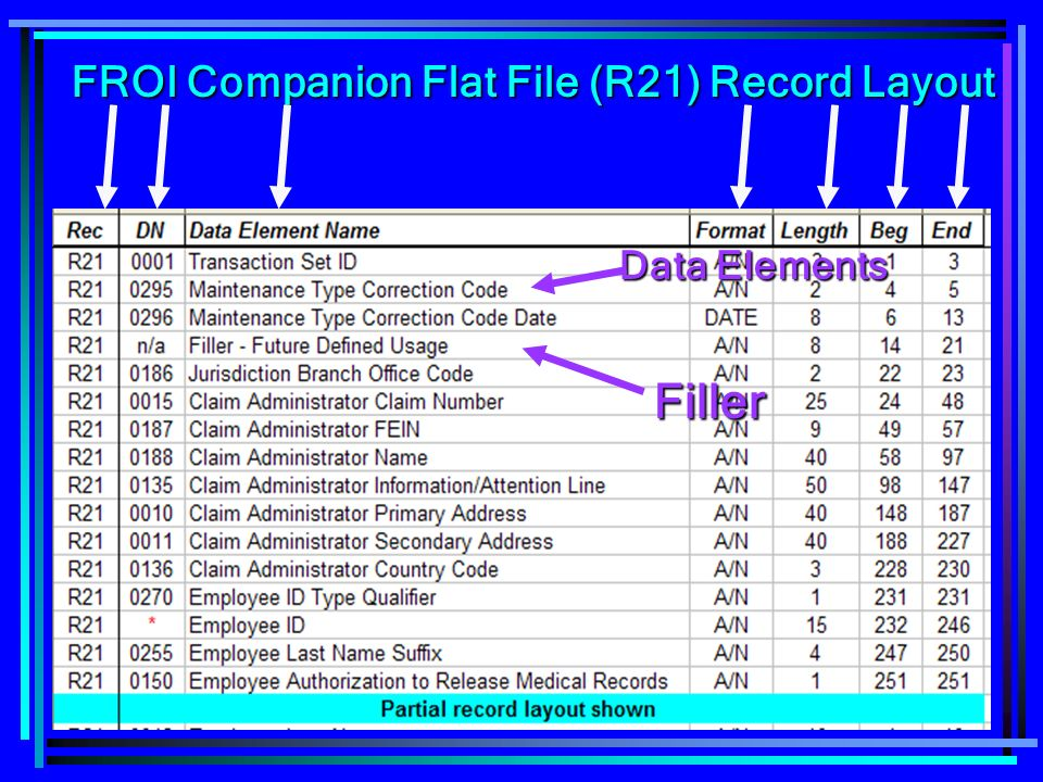 82 FROI Companion Flat File (R21) Record Layout Data Elements Filler