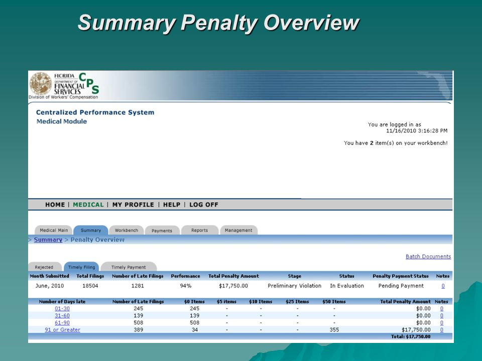 Summary Penalty Overview