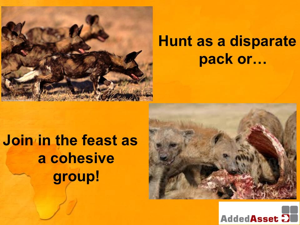 Hunt as a disparate pack or… Join in the feast as a cohesive group!
