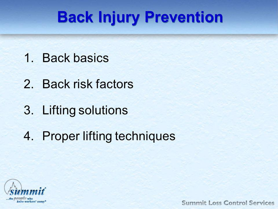 Back Injury Prevention 1.Back basics 2.Back risk factors 3.Lifting solutions 4.Proper lifting techniques