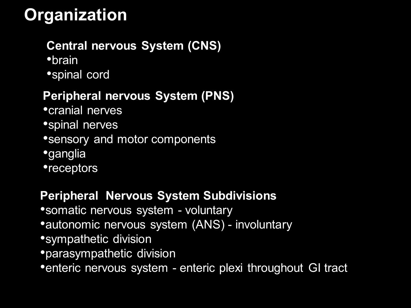 Organization Central nervous System (CNS) brain spinal cord Peripheral nervous System (PNS) cranial nerves spinal nerves sensory and motor components