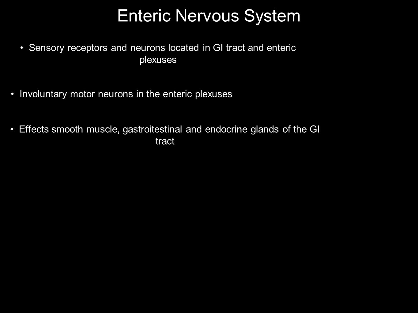 Enteric Nervous System Sensory receptors and neurons located in GI tract and enteric plexuses Involuntary motor neurons in the enteric plexuses Effect