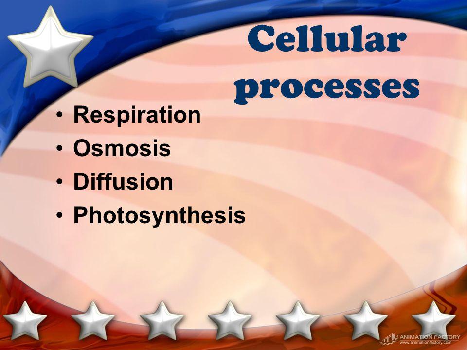 Cellular processes Respiration Osmosis Diffusion Photosynthesis
