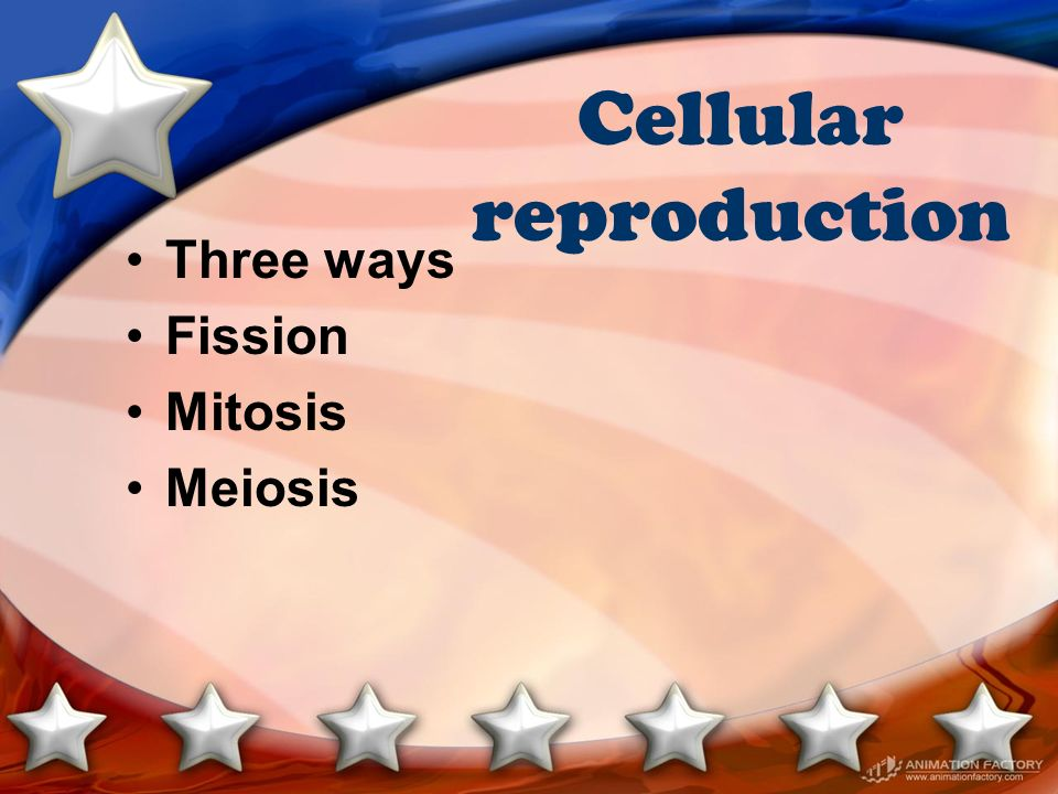 Cellular reproduction Three ways Fission Mitosis Meiosis