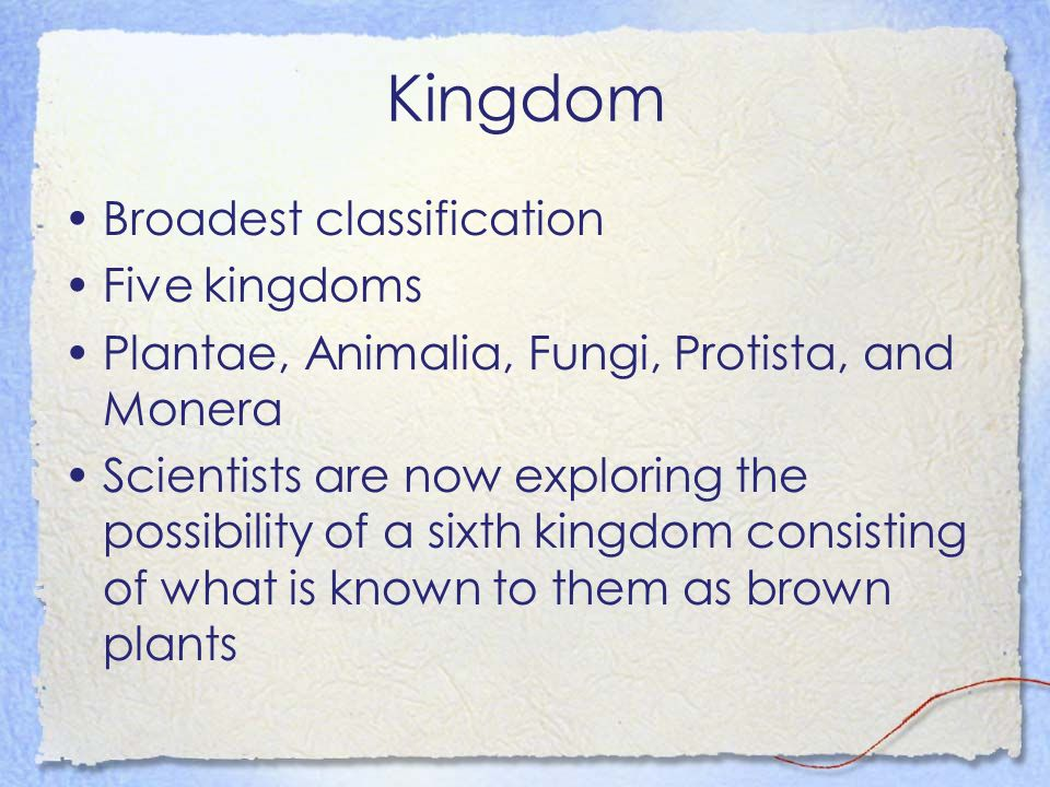 Kingdom Broadest classification Five kingdoms Plantae, Animalia, Fungi, Protista, and Monera Scientists are now exploring the possibility of a sixth kingdom consisting of what is known to them as brown plants