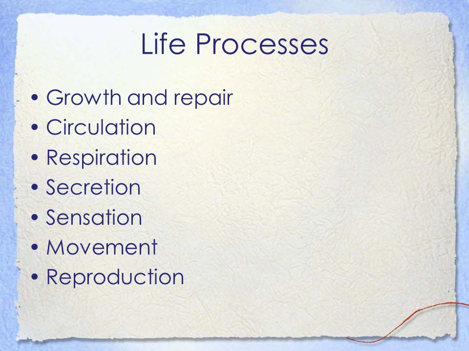 Life Processes Growth and repair Circulation Respiration Secretion Sensation Movement Reproduction