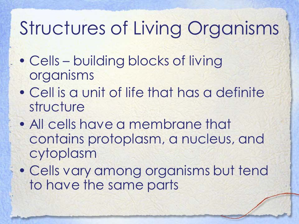 Structures of Living Organisms Cells – building blocks of living organisms Cell is a unit of life that has a definite structure All cells have a membrane that contains protoplasm, a nucleus, and cytoplasm Cells vary among organisms but tend to have the same parts