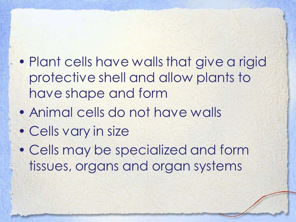 Plant cells have walls that give a rigid protective shell and allow plants to have shape and form Animal cells do not have walls Cells vary in size Cells may be specialized and form tissues, organs and organ systems