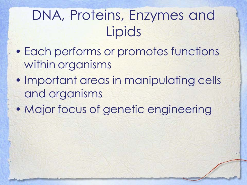 DNA, Proteins, Enzymes and Lipids Each performs or promotes functions within organisms Important areas in manipulating cells and organisms Major focus