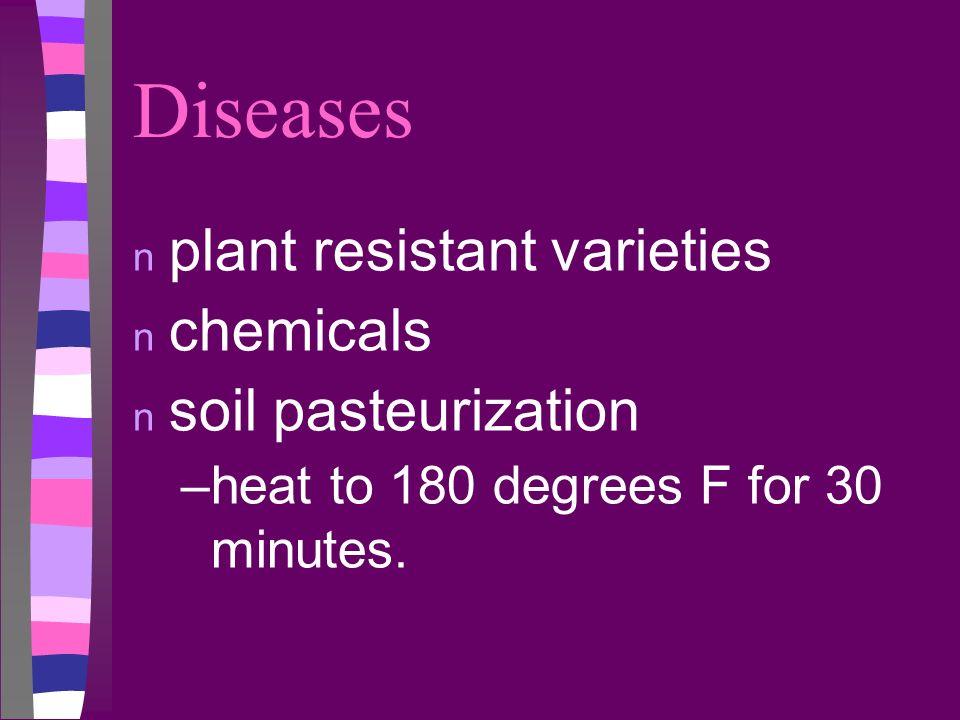 Diseases n plant resistant varieties n chemicals n soil pasteurization –heat to 180 degrees F for 30 minutes.