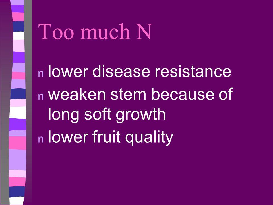 Too much N n lower disease resistance n weaken stem because of long soft growth n lower fruit quality