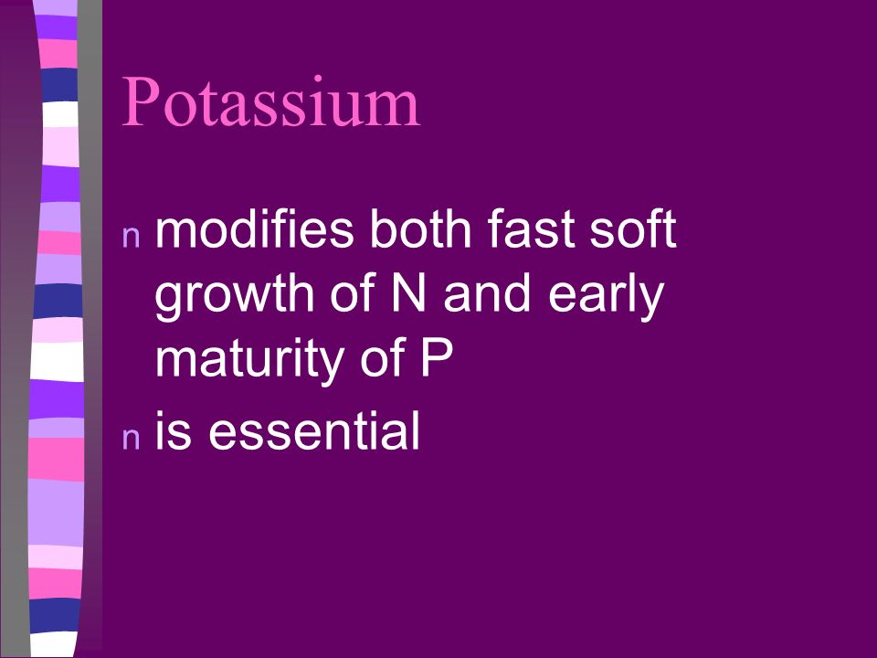 Potassium n modifies both fast soft growth of N and early maturity of P n is essential