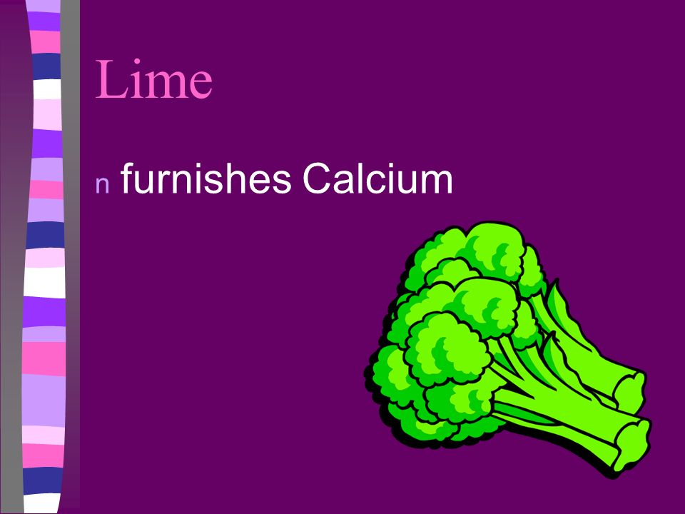 Lime n furnishes Calcium