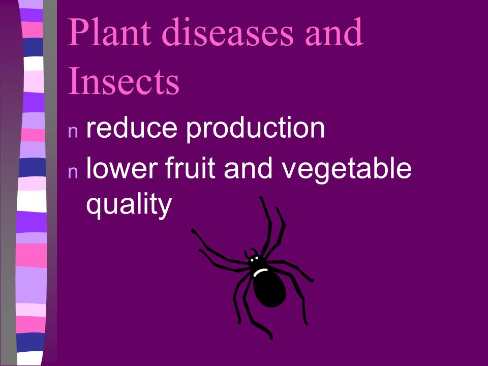 Plant diseases and Insects n reduce production n lower fruit and vegetable quality
