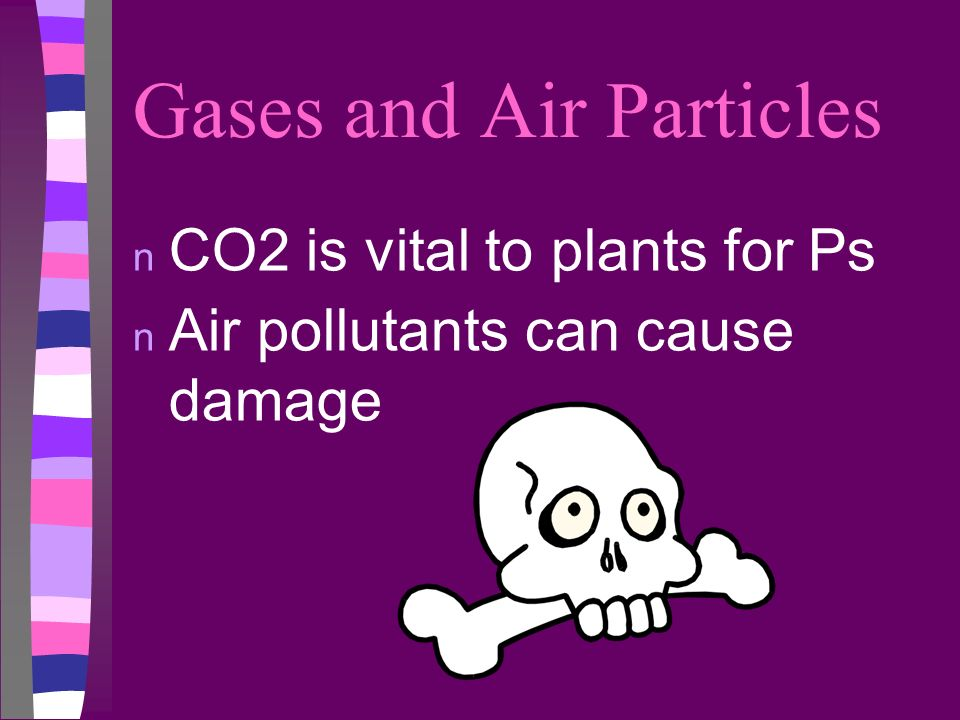 Gases and Air Particles n CO2 is vital to plants for Ps n Air pollutants can cause damage