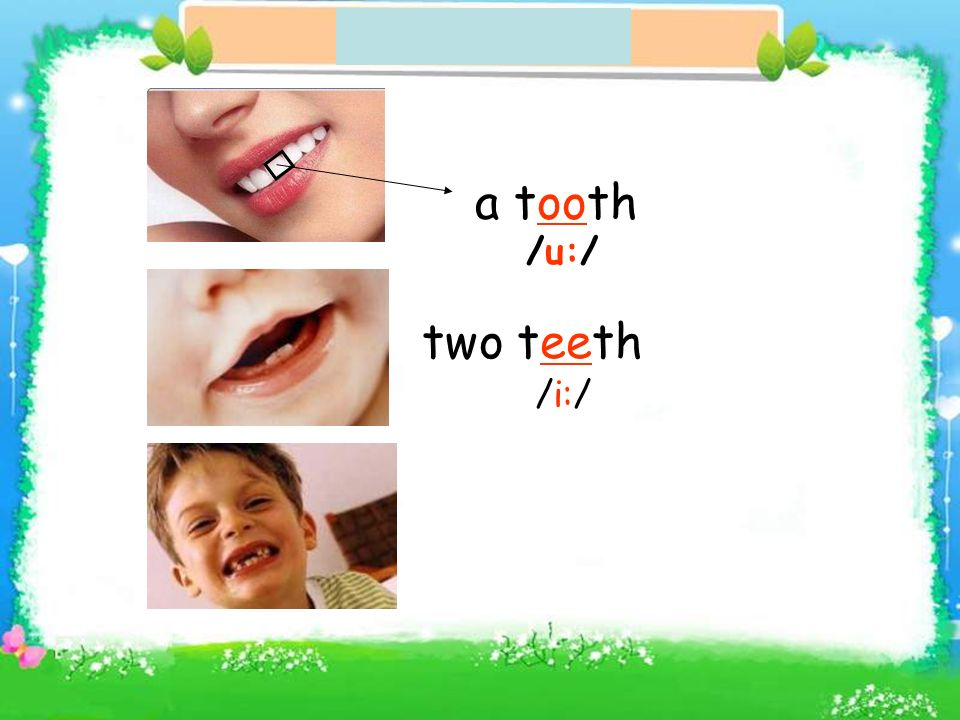 a tooth /u:/ two teeth /i:/